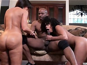 Lisa Ann and Misty Stone drool over this hard shaft